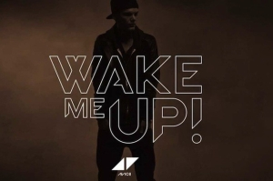 avicii_wake-me-up